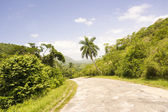 Long road or way among exhuberant vegetation in tropical country — Stock Photo