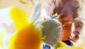 Splashing of an egg against glass surface — Stock Photo