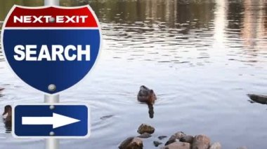Search road sign — Stock Video
