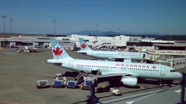 Air Canada airplanes sit parked at terminal of airport — Video Stock