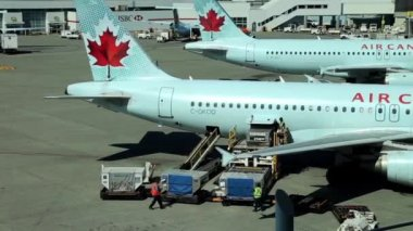 Air Canada airplanes sit parked at terminal of airport — Stock Video