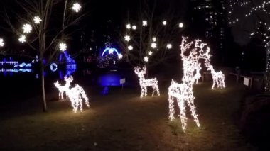 Reindeer lights holiday decoration at night — Stock Video