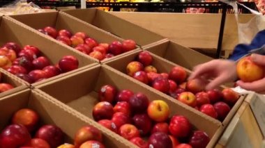 Man selecting plum in grocery store produce department. — Stock Video