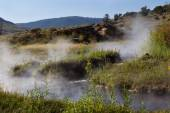Natural Hot Springs for Bathing in Yellowstone Park  — Stock Photo