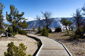 Pathway to Hot Springs in Yellowstone National Park  — Stock Photo