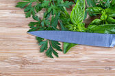Fresh herbs and knife on cutting board  — Stock Photo