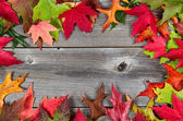Border of Autumn Leaves on Aged Wood  — Stock Photo