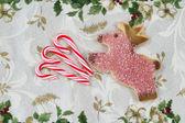 Holiday Treats  — Stock Photo