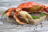 Steamed Crab on Server Board  — Stockfoto