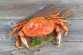 Cooked Crab on Server board  — Stock Photo