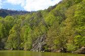 Small lake in Dilijan, Armenia — Stok fotoğraf