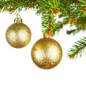 Decorative balls on fir branch — Stock Photo