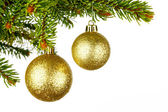 Christmas tree branch with ball — Stock Photo