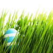 Easter Egg in grass — Stock Photo #59960111