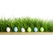 Row of Easter Eggs in grass — Stock Photo