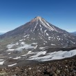 Mountain Kamchatka landscape: view on active Koryaksky Volcano — Stock Photo #69504841