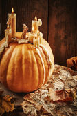 Still life with pumpkin — Stock Photo