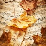 Autumn leaves — Stock Photo #66184131