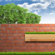 Grown tree with brick wall on green fresh grass. — Stock Photo #60613399