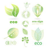 Ecological networks  — Stock Vector