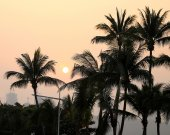 Photo sunset with palm trees — Stock Photo