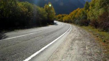 Sharp asphalt road lit glare of the sun, autumn — Stock Video