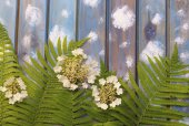 Carved green fern leaves and white flowers on a blue wooden back — Stock Photo