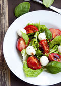 Mozarella and Tomato Salad with Basil and Lettuce — Stock Photo