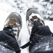 Winter Hiking Boots — Stock Photo #61705529