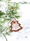Noel dekorasyon köknar ağacı — Stok fotoğraf