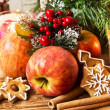 Apple, Gingerbread and Spices with Christmas Decoration — Stock Photo #62689919