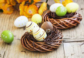 Easter Eggs Painted in Nests — Стоковое фото