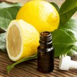 Постер, плакат: Lemon Essential Oil