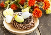 Nest with Easter Eggs — ストック写真