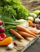 Bio Vegetables Freshly Picked, Healthy Vegetables Assortment — Stock Photo