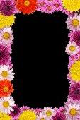 Flowers — Foto de Stock