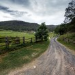 Road in Queensland, Australia — Stock Photo #67891969