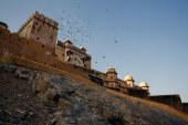 Amer Fort  in Jaipur, India — Stock Photo