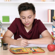 Young boy writing his homework at school — Stock Photo #53331191