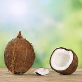 Coconut fruits in summer with copyspace — Stock Photo
