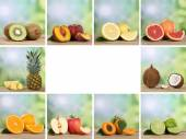 Set of fruits like orange, peach, pineapple, lemon and apple wit — Stock Photo
