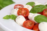 Caprese salad with tomatoes, basil and mozzarella on plate — Stock fotografie