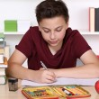Child writing homework at school — Stock Photo #61432489