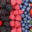 Berry fruits in a row with strawberries, blueberries and cherrie — Stock Photo #75922833