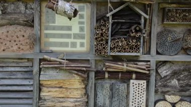 Insect house and nest box of wood and natural components — Stock Video