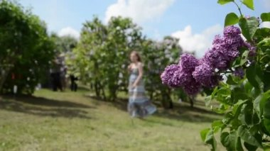 Blooming lilac tree branch move in wind and blurred woman — Stock Video