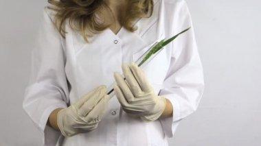 Woman flask wheat plant — Wideo stockowe