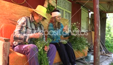 Young woman and old senior gather herbal chamomile flower — Stock Video
