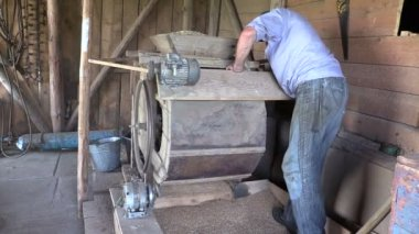 Farmer processed grain with old hand cleansing harp in barn — Stock Video