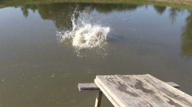 People jump from wooden bridge in pond lake water — Vídeo de Stock